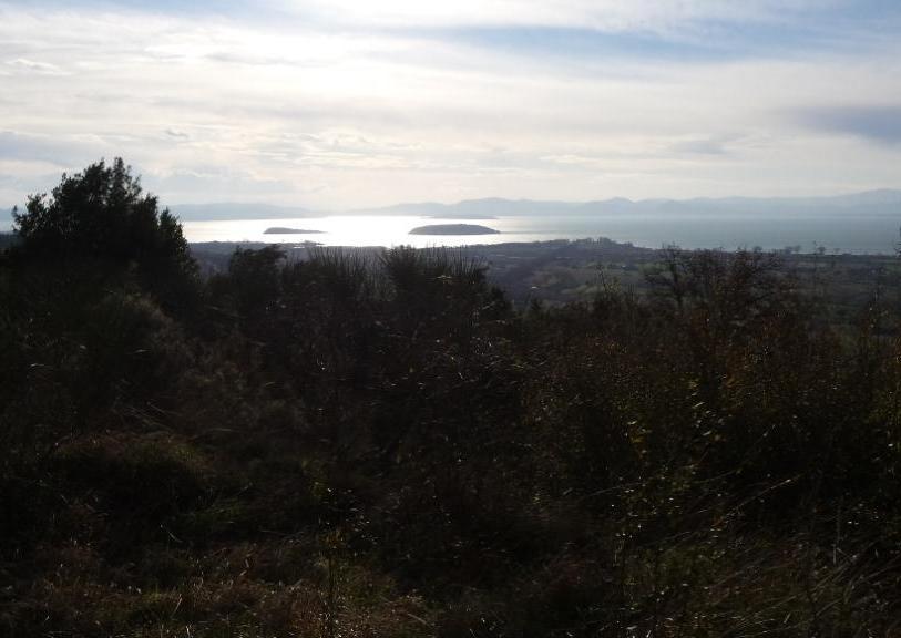 il lago visto dal sentiero che sale da Sanguineto