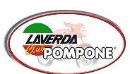 Pompone