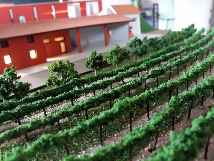 Zorzettig Vini - modello illuminato scala 1:100